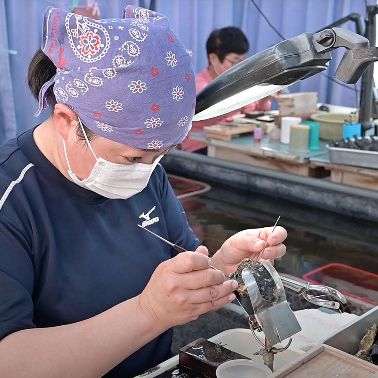 三重県真珠振興協議会|真珠ができるまで4