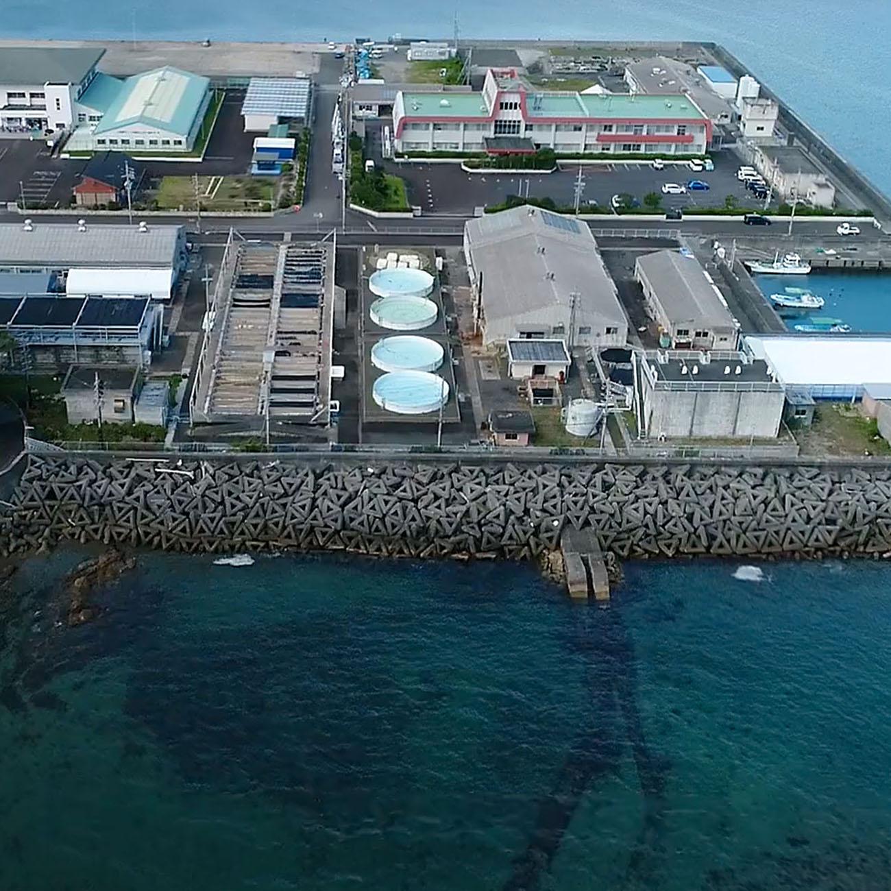 国立水産総合研究センターや三重県水産研究所